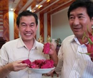 'Ông trùm' thanh long đất Bình Thuận